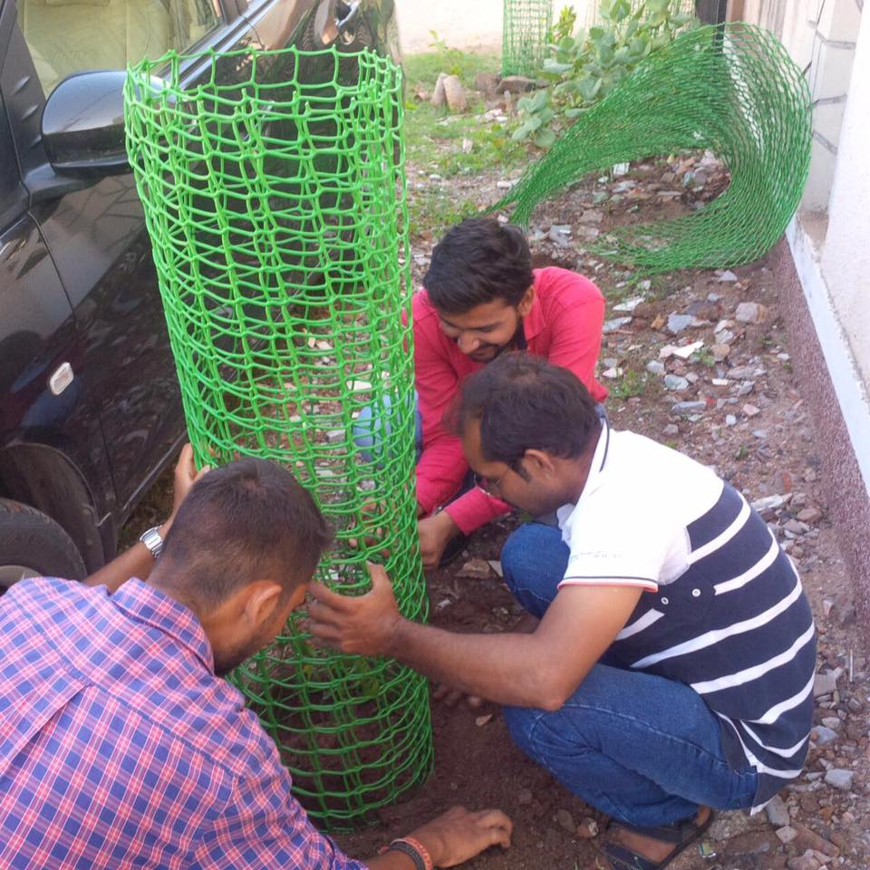 Tree Plantation @ Vashana Road, Vadodara