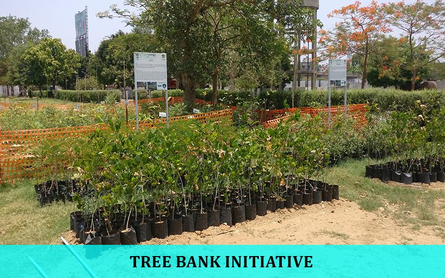 TreeBank